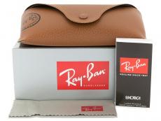 Akiniai nuo saulės Ray-Ban RB4202 - 6069/71